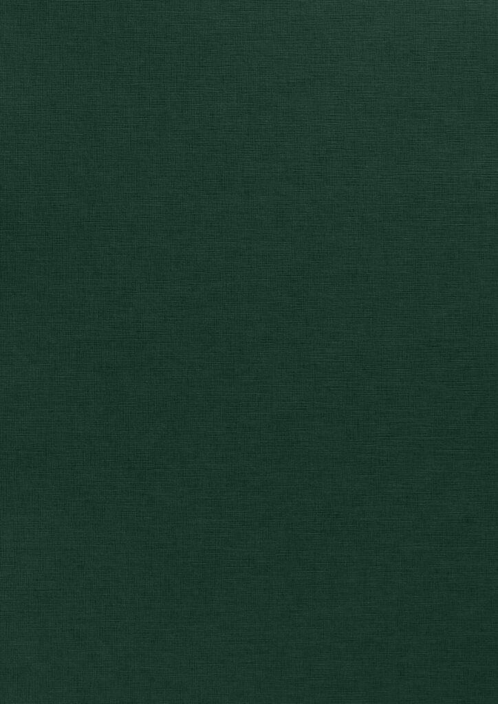 Verde Edera, E/R65 Fiandra