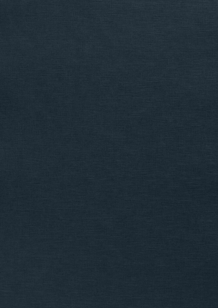 Blu Notte, E/R65 Fiandra