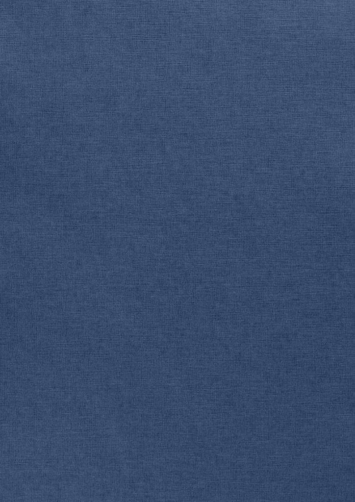 Blu Scuro, E/R65 Fiandra
