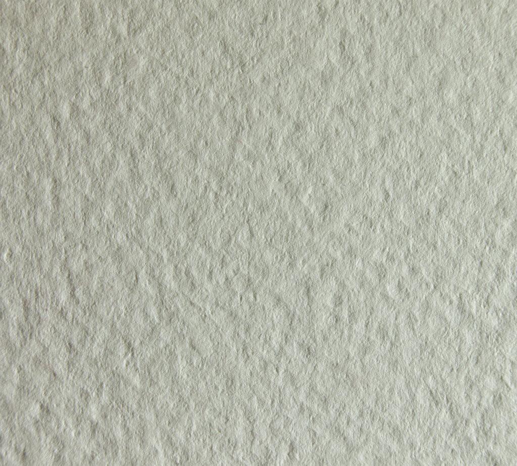Tintoretto White